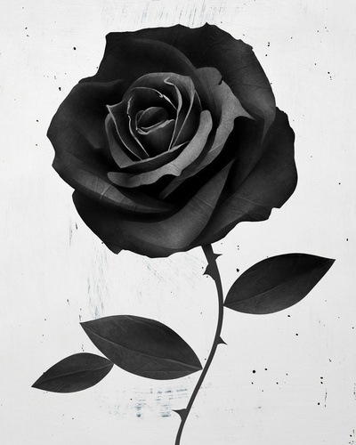 Graphic 3D rose drawing tattoo