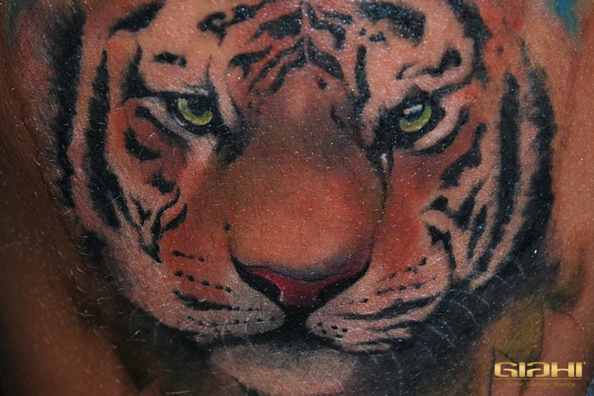 Realistic tiger tattoo by Szilard