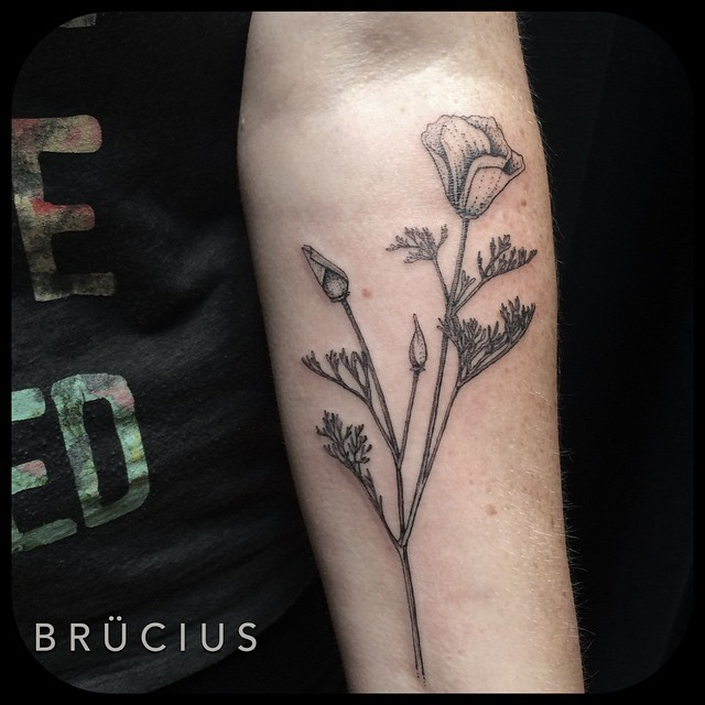 Lonely Flower in Bloom on Arm