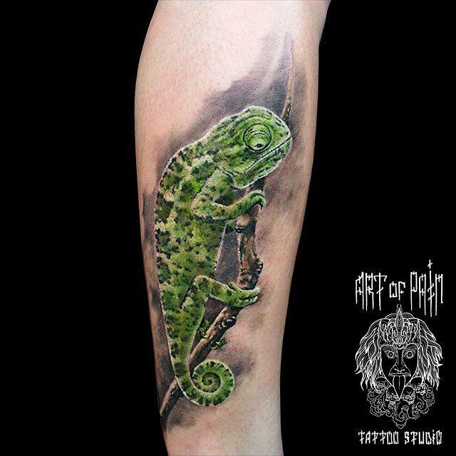 Chameleon Tattoo on Arm