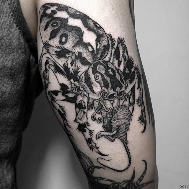 spider tattoo on arm