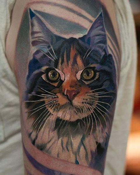 cat portrait by Al Minz