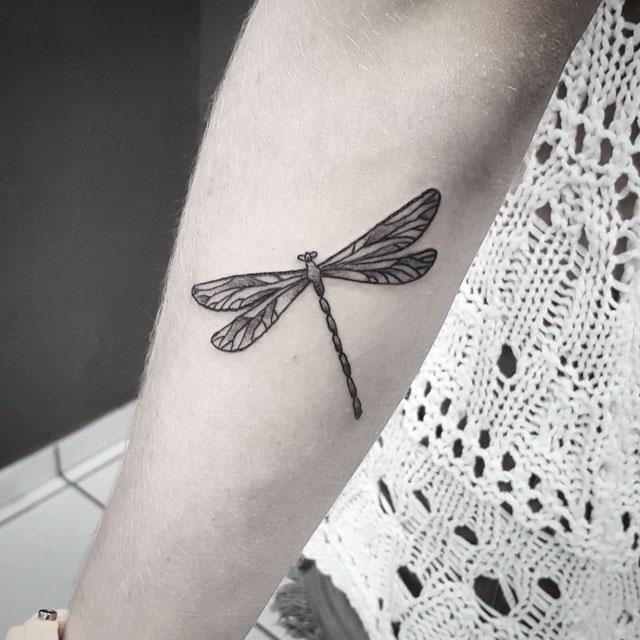 dragondly dotwork tattoo on forearm