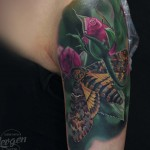 Butterfly Tattoo Realistic