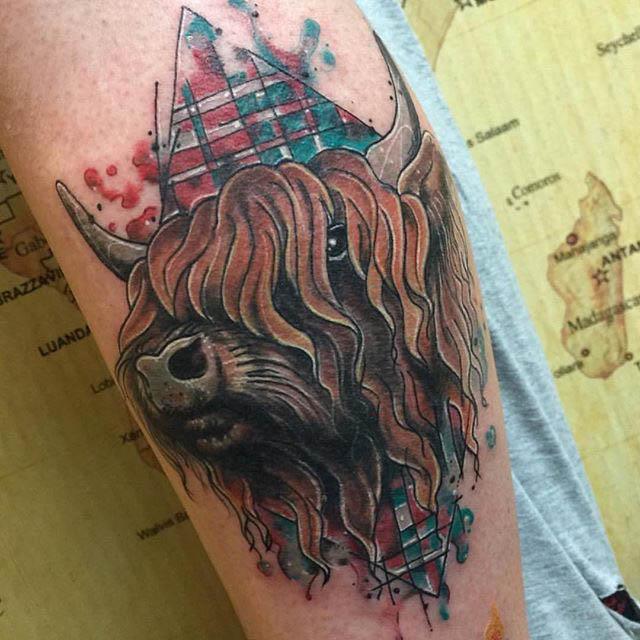 Scottish Tattoo Buffalo by Clare La-La Lambert