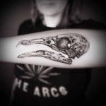 Bird Skull Tattoo on Forearm