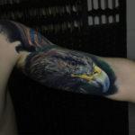 Realistic Eagle Tattoo