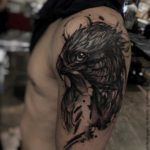 Tattoo Falcon