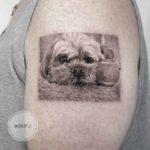 Sad Dog Tattoo